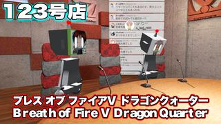 テレビゲームの中林 123号店 ブレス オブ ファイアV ドラゴンクォーター/Breath of Fire V Dragon Quarter
